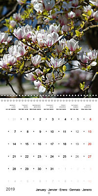 Beautiful Magnolia (Wall Calendar 2019 300 × 300 mm Square) - Produktdetailbild 1