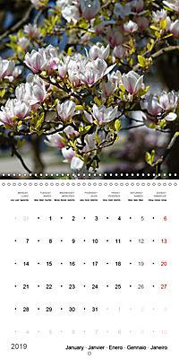 Beautiful Magnolia (Wall Calendar 2019 300 × 300 mm Square) - Produktdetailbild 1
