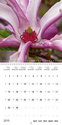 Beautiful Magnolia (Wall Calendar 2019 300 × 300 mm Square) - Produktdetailbild 4