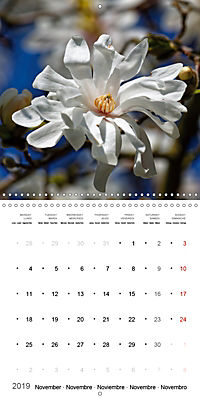 Beautiful Magnolia (Wall Calendar 2019 300 × 300 mm Square) - Produktdetailbild 11