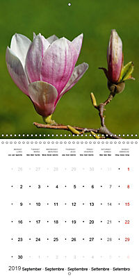Beautiful Magnolia (Wall Calendar 2019 300 × 300 mm Square) - Produktdetailbild 9