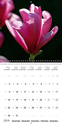 Beautiful Magnolia (Wall Calendar 2019 300 × 300 mm Square) - Produktdetailbild 12