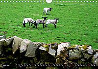 Beautiful Manor Valley (Wall Calendar 2019 DIN A4 Landscape) - Produktdetailbild 4