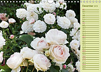 Beautiful Roses in the Garden (Wall Calendar 2019 DIN A4 Landscape) - Produktdetailbild 12