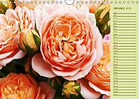 Beautiful Roses in the Garden (Wall Calendar 2019 DIN A4 Landscape) - Produktdetailbild 1