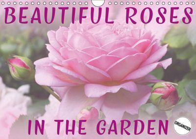 Beautiful Roses in the Garden (Wall Calendar 2019 DIN A4 Landscape), Martina Cross