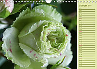 Beautiful Roses in the Garden (Wall Calendar 2019 DIN A4 Landscape) - Produktdetailbild 10
