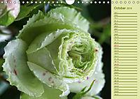 Beautiful Roses in the Garden (Wall Calendar 2019 DIN A4 Landscape) - Produktdetailbild 10