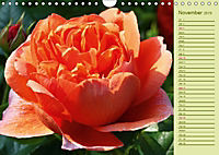 Beautiful Roses in the Garden (Wall Calendar 2019 DIN A4 Landscape) - Produktdetailbild 11