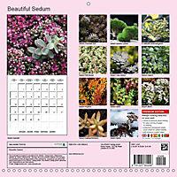 Beautiful Sedum (Wall Calendar 2019 300 × 300 mm Square) - Produktdetailbild 13
