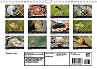 Beautiful snails (Wall Calendar 2019 DIN A4 Landscape) - Produktdetailbild 13