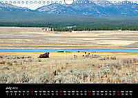 Beautiful Yellowstone and Grand Tetons National Parks (Wall Calendar 2019 DIN A4 Landscape) - Produktdetailbild 7