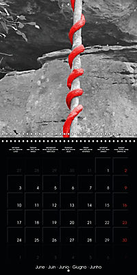 Beauty in Red (Wall Calendar 2019 300 × 300 mm Square) - Produktdetailbild 6