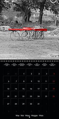 Beauty in Red (Wall Calendar 2019 300 × 300 mm Square) - Produktdetailbild 5