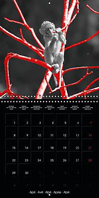 Beauty in Red (Wall Calendar 2019 300 × 300 mm Square) - Produktdetailbild 4
