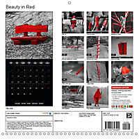 Beauty in Red (Wall Calendar 2019 300 × 300 mm Square) - Produktdetailbild 13