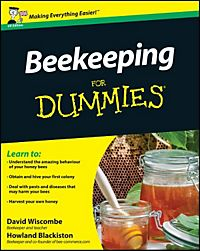 building a website for dummies 4th edition pdf