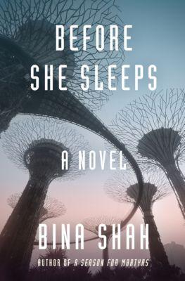 Before She Sleeps, Bina Shah