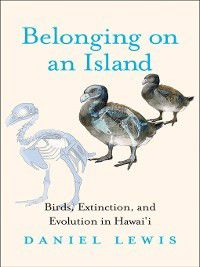 Belonging on an Island, Daniel Lewis