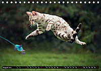 Bengalen Outdoor und Action (Tischkalender 2019 DIN A5 quer) - Produktdetailbild 8