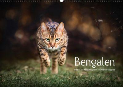 Bengalen Outdoor und Action (Wandkalender 2019 DIN A2 quer), Andreas Krappweis