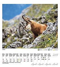Berchtesgaden Königssee Postkartenkalender 2019 - Produktdetailbild 5