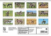 BERGZEBRAS Impressionen aus Südafrika (Wandkalender 2019 DIN A3 quer) - Produktdetailbild 13