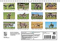 BERGZEBRAS Impressionen aus Südafrika (Wandkalender 2019 DIN A4 quer) - Produktdetailbild 13