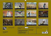Beutegreifer (Wandkalender 2019 DIN A2 quer) - Produktdetailbild 13
