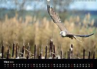 Beutegreifer (Wandkalender 2019 DIN A2 quer) - Produktdetailbild 3
