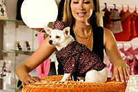 Beverly Hills Chihuahua - Produktdetailbild 8