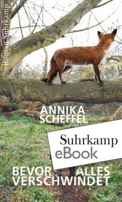 Bevor alles verschwindet, Annika Scheffel