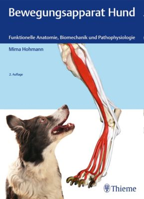 Bewegungsapparat Hund, Mima Hohmann