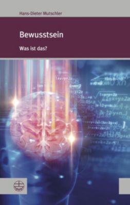 Bewusstsein, Hans-Dieter Mutschler