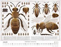 Bienen 2019 - Produktdetailbild 1