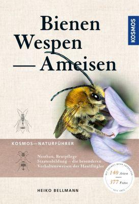 Bienen, Wespen, Ameisen, Heiko Bellmann, Matthias Helb