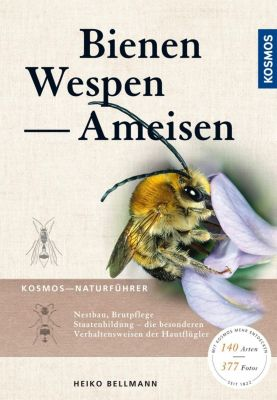 Bienen, Wespen, Ameisen - Heiko Bellmann |