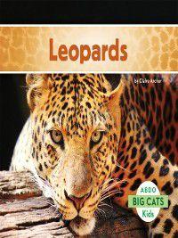 Big Cats: Leopards, Claire Archer