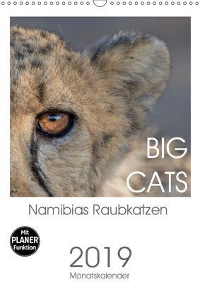 BIG CATS - Namibias Raubkatzen (Wandkalender 2019 DIN A3 hoch), Irma van der Wiel