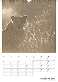 BIG CATS - Namibias Raubkatzen (Wandkalender 2019 DIN A3 hoch) - Produktdetailbild 2