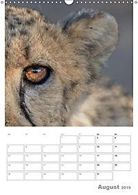BIG CATS - Namibias Raubkatzen (Wandkalender 2019 DIN A3 hoch) - Produktdetailbild 8