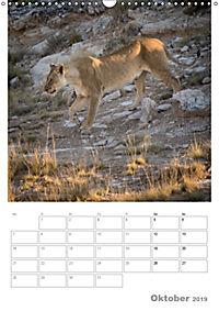BIG CATS - Namibias Raubkatzen (Wandkalender 2019 DIN A3 hoch) - Produktdetailbild 10