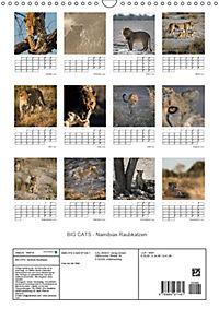 BIG CATS - Namibias Raubkatzen (Wandkalender 2019 DIN A3 hoch) - Produktdetailbild 13