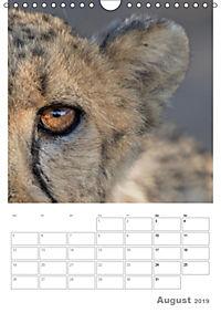 BIG CATS - Namibias Raubkatzen (Wandkalender 2019 DIN A4 hoch) - Produktdetailbild 8