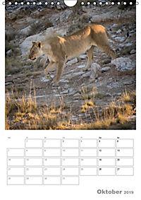 BIG CATS - Namibias Raubkatzen (Wandkalender 2019 DIN A4 hoch) - Produktdetailbild 10