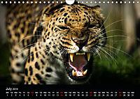 Big Catz (Wall Calendar 2019 DIN A4 Landscape) - Produktdetailbild 7