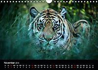Big Catz (Wall Calendar 2019 DIN A4 Landscape) - Produktdetailbild 11