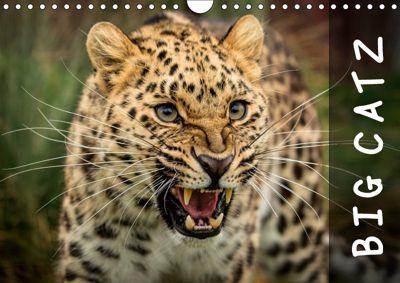 Big Catz (Wall Calendar 2019 DIN A4 Landscape), Jason Brown