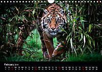 Big Catz (Wall Calendar 2019 DIN A4 Landscape) - Produktdetailbild 2
