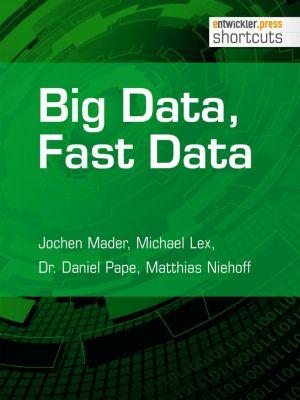 Big Data, Fast Data, Jochen Mader, Dr. Daniel Pape, Matthias Niehoff, Michael Lex
